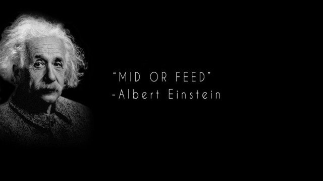 request_1_by_soinnes-d7ovf81_tsm_mid_albert_einstein